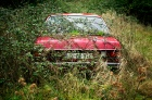 overgrown weeds - car